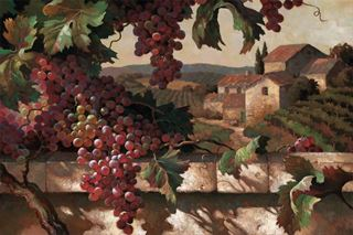 Picture of Harvest Time in Tuscany