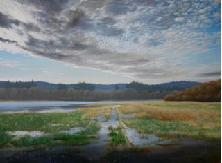 Picture of Flooded Field - SOLD!!