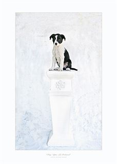 Picture of Pup on a Pedestal