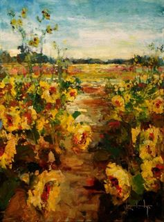 Picture of Sunflowers St. Augustine