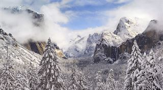 Picture of Snow Day - Yosemite Valley