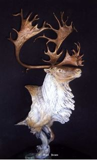 Picture of Royal Flush Caribou