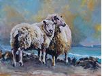 Picture of Bay Wind Sheep
