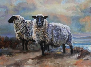 Picture of Black Face Sheep, Devon
