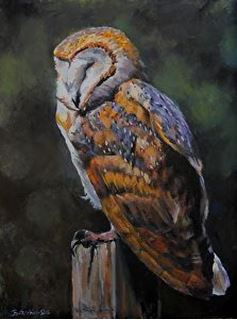 Picture of Barn Owl Blues