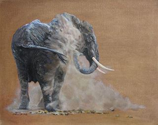 Picture of Elephant Dust