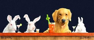 Picture of Hare of the Dog, Blonde